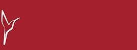 kifsa-logo